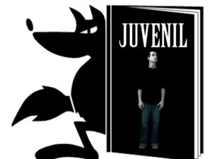 Narrativa juvenil